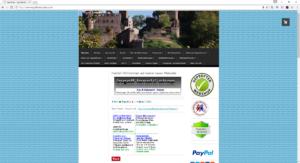 www.ingolflenski-shop.com